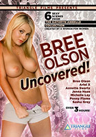 Bree olson brees beach party porn tube
