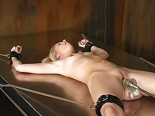 Newest shemale tube daily basis sex tube
